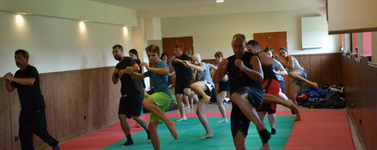 DSC 3247 1280x510 - Obóz treningowy kung-fu 2019