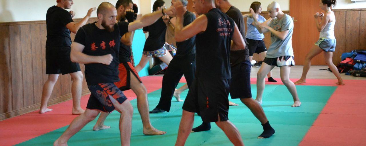 DSC 3253 1280x510 - Obóz treningowy kung-fu 2019