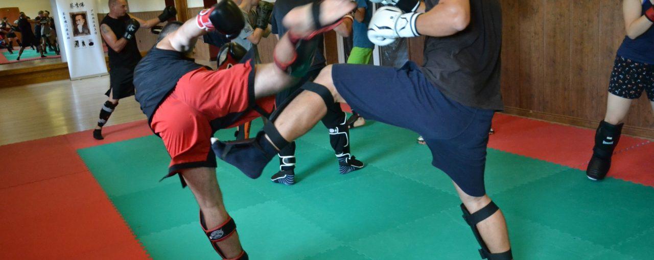 DSC 3295 1280x510 - Obóz treningowy kung-fu 2019